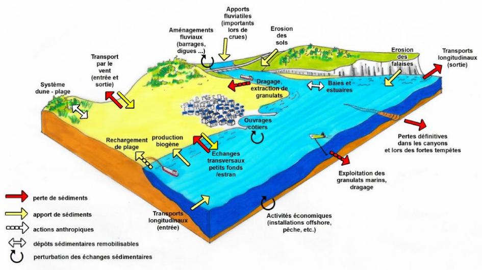 Schéma des différents phénomènes en cours sur les zones littorales