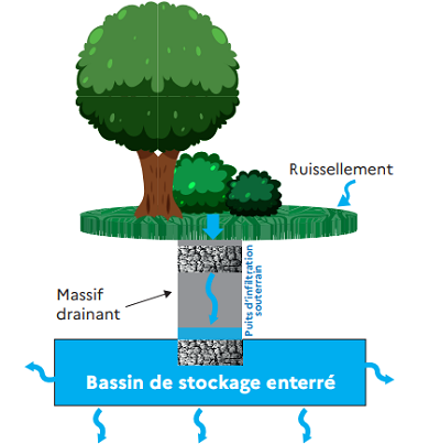 Schéma simplifié d'une île végétalisée couplée à un puits d'infiltration et un bassin enterré