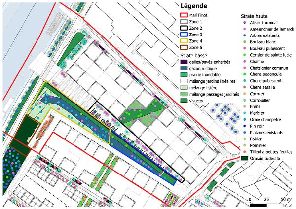 Carte des zones végétalisées et du type de végétaux intégrés dans la modélisation