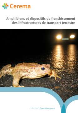 Amphibiens et dispositifs de franchissement des infrastructures de transport terrestre