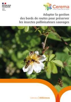 Adapter la gestion des bords de routes pour préserver les insectes pollinisateurs sauvages