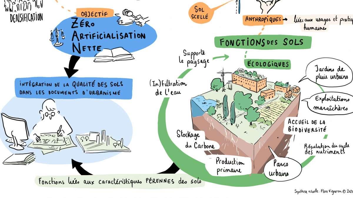 L'objectif ZAN, un levier pour l'intégration de la qualité des sols dans les documents d'urbanisme : retour sur le webinaire du 29 janvier